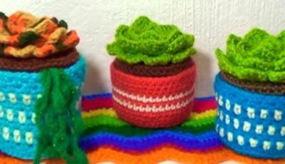 Succulents Crochet plant 4
