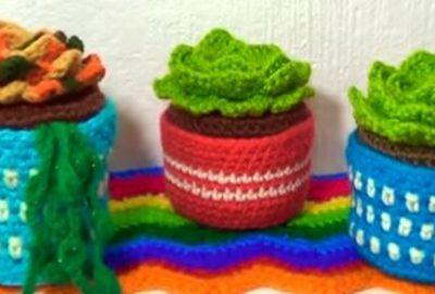 Succulents Crochet plant 2