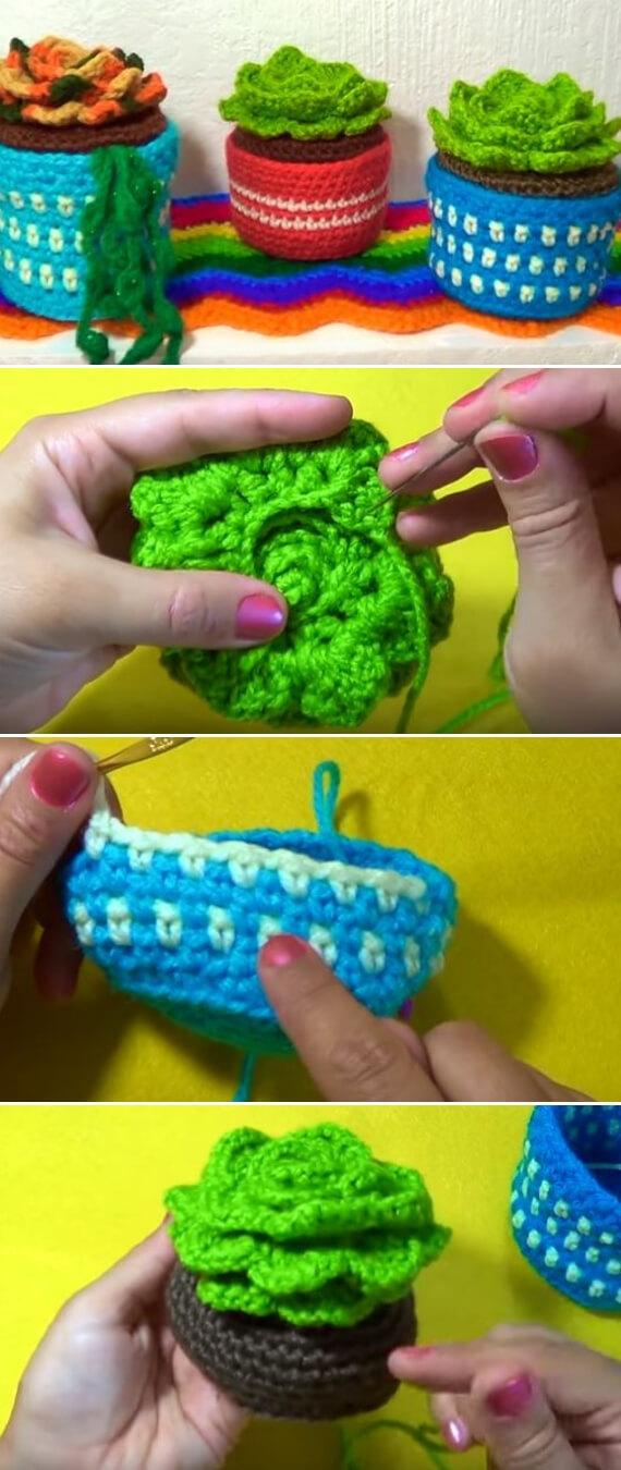 Succulents Crochet plant popularcrochet.com #crochet #succulents #plant